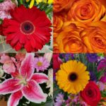 Young's Florist